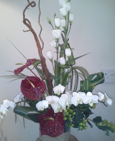 Exotic Anthuriums and Orchids