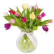 Terrific Tulips!